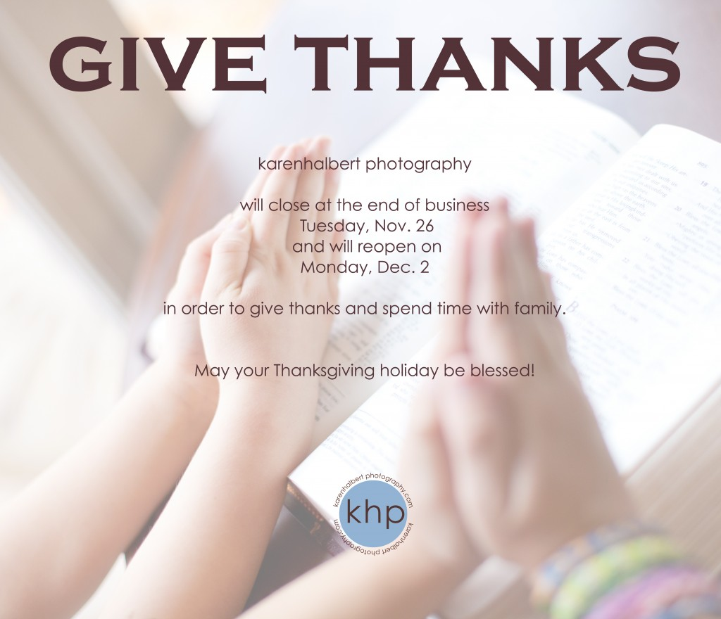 thanksgiving promo 2013